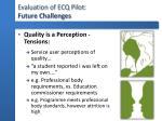 evaluation of ecq pilot future challenges1