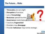 the future risks