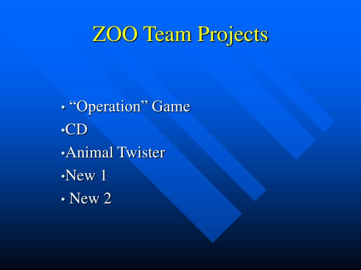 Zoo team projects