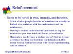 reinforcement2