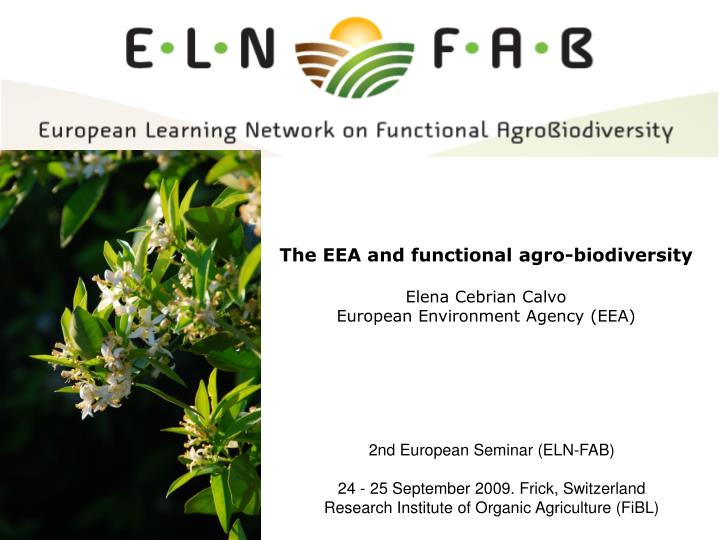 the eea and functional agro biodiversity elena cebrian calvo european environment agency eea n.