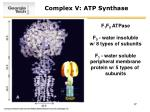 complex v atp synthase