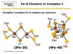 fe s clusters in complex i