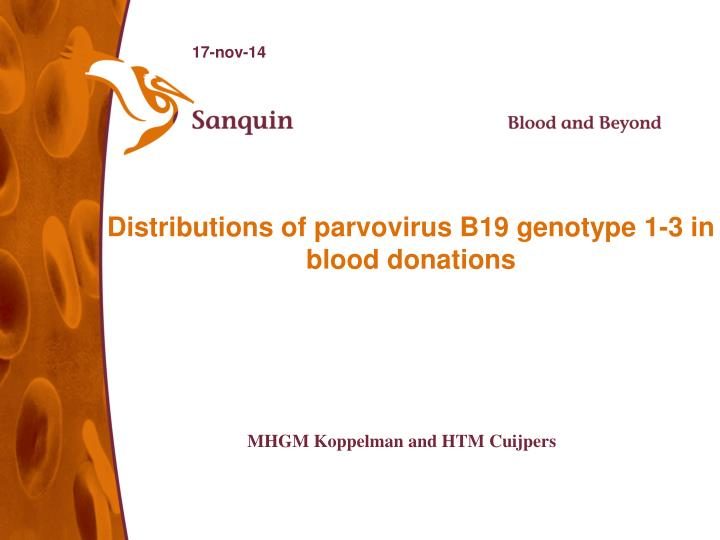 distributions of parvovirus b19 genotype 1 3 in blood donations n.