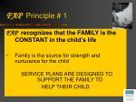 fap principle 1