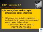 fap principle 2