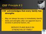 fap principle 3