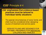 fap principle 4