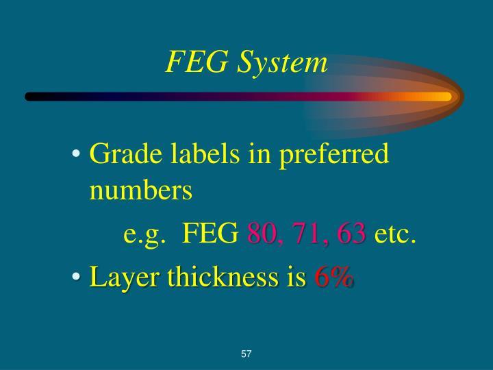 FEG System