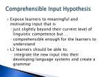 comprehensible input hypothesis1