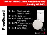 more flexguard glassbreaks coming q2 2001