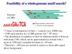 feasibility of a whole genome motif search