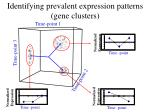 identifying prevalent expression patterns gene clusters