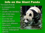 info on the giant panda