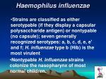 haemophilus influenzae1