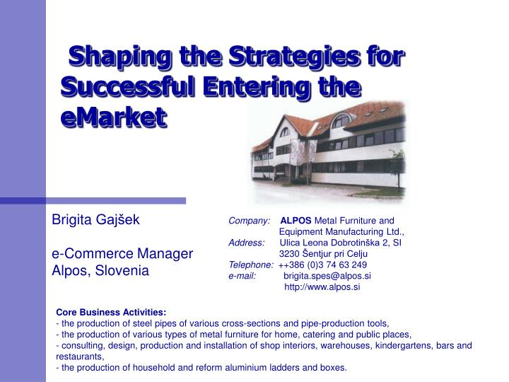 shaping the strategies for successful entering the emarket n.