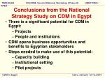 conclusions from the national strategy study on cdm in egypt