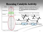 rescuing catalytic activity5