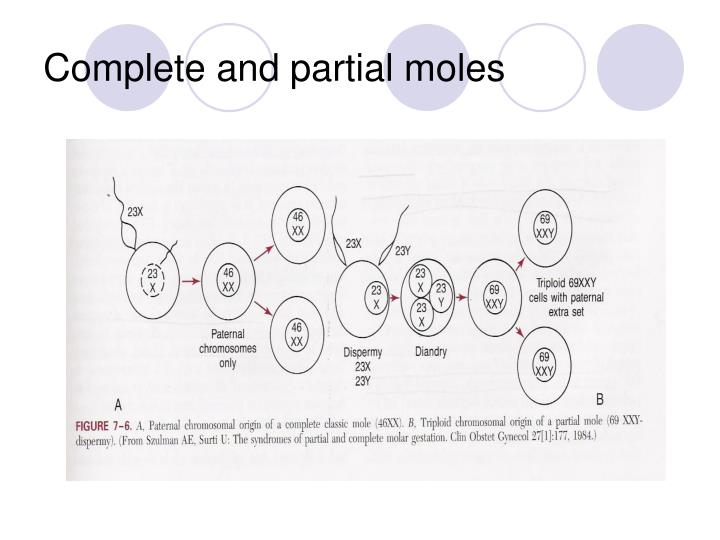 Complete and partial moles