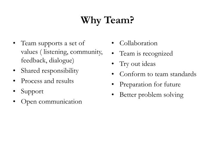 Team supports a set of values ( listening, community, feedback, dialogue)