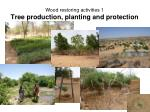 wood restoring activities 1 tree production planting and protection