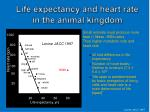 life expectancy and heart rate in the animal kingdom