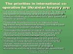 the priorities in international co operation for ukrainian forestry are
