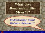 what does renormalizability mean
