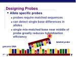 designing probes