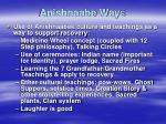 anishnaabe way s