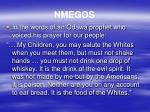 nmegos