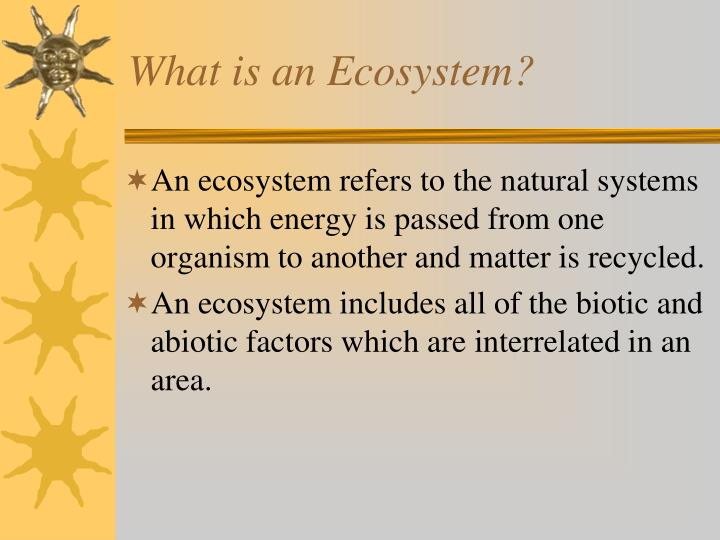 what is an ecosystem n.