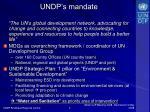 undp s mandate