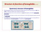 structure function of hemoglobin cont1