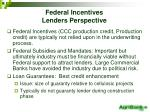 federal incentives lenders perspective