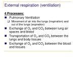external respiration ventilation