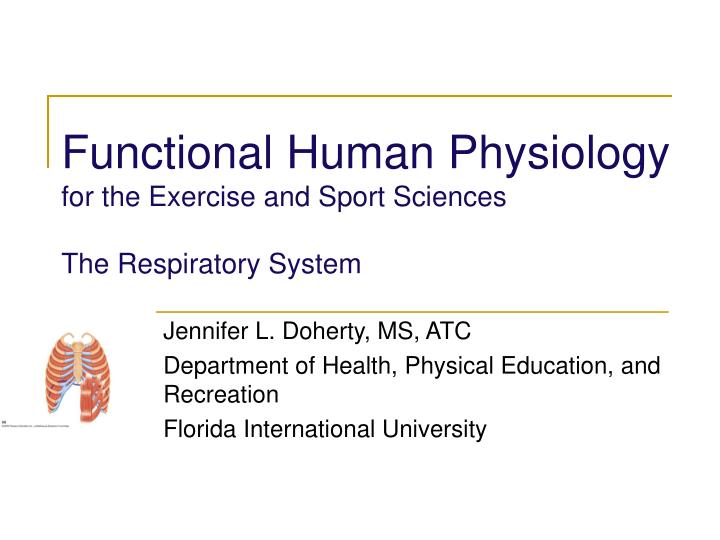 functional human physiology for the exercise and sport sciences the respiratory system n.