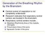 generation of the breathing rhythm by the brainstem