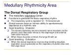 medullary rhythmicity area1