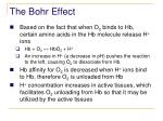 the bohr effect
