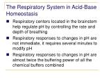 the respiratory system in acid base homeostasis2
