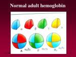 normal adult hemoglobin