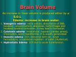 brain volume