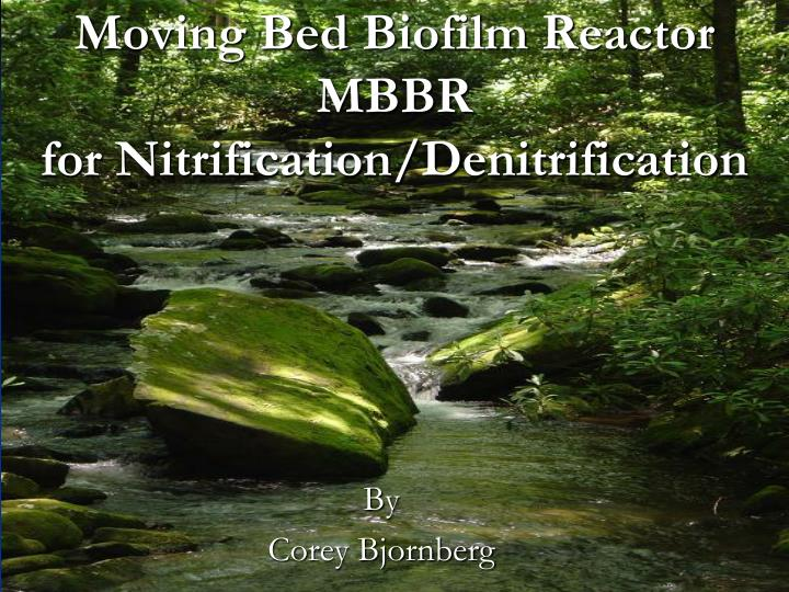 moving bed biofilm reactor mbbr for nitrification denitrification n.