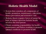 holistic health model