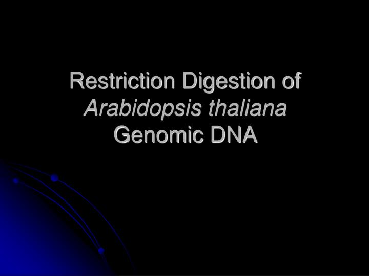 restriction digestion of arabidopsis thaliana genomic dna n.