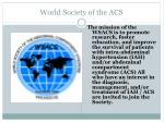 world society of the acs
