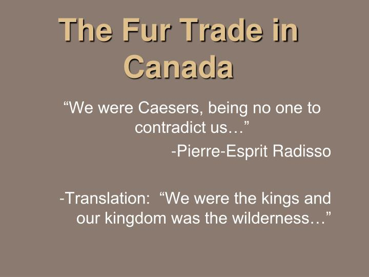 the fur trade in canada n.