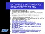 entidades e instrumentos bajo competencia cnv