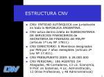 estructura cnv